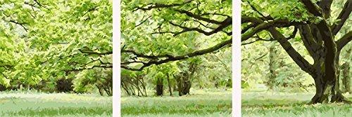 YEESAM ART Neuerscheinungen Malen nach Zahlen 3 teilig bilder für Erwachsene - Grün Trees Bäume Schatten Shade 16 * 16 Zoll Leinen Segeltuch - DIY ölgemälde ölfarben...