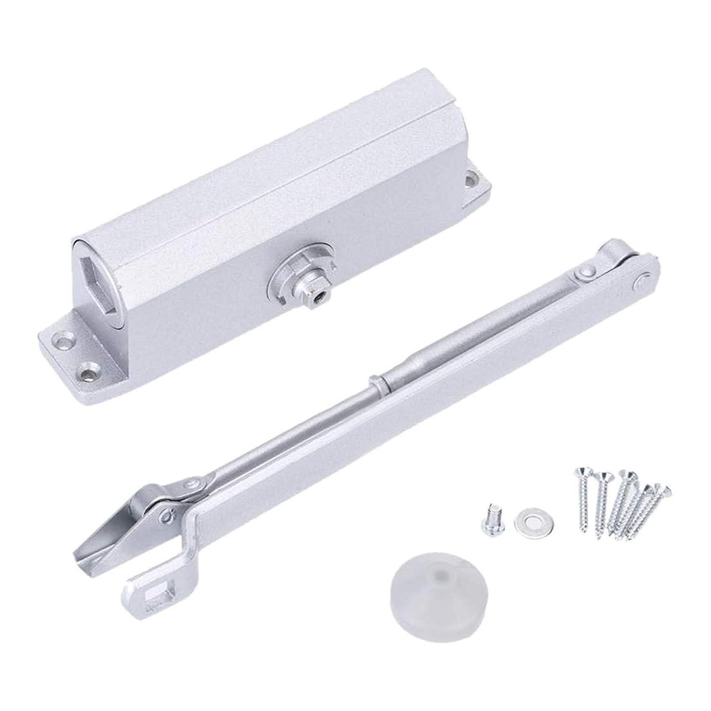 温帯ユーモラス動的SYMu クローサー自動油圧ドアクローザー35キロパラレルブラケット付きアルミ合金油圧ドア (Color : Silver)