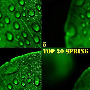 TOP 20 Spring, Vol. 5