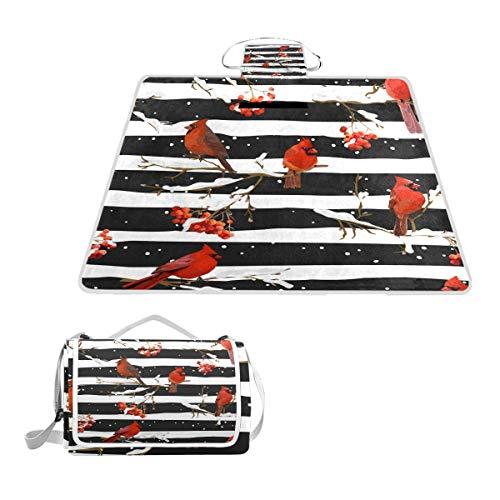 TIZORAX Picknickdecke für Wintervögel mit Rowan Beeren, wasserdicht, faltbar, für Strand, Camping, Wandern