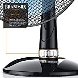 Brandson - Tischventilator 35cm   Tisch Ventilator mit 3-Leistungsstufen   Leistungsaufnahme 40W   angenehmes Betriebsgeräusch   Neigungswinkel ca. 30°   Oszillation ca. 85°   schwarz