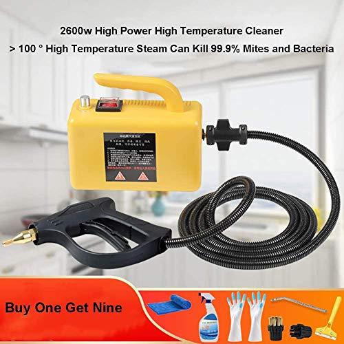 Dameng Dampf-2600W-Reinigungs-Maschine Küchendunstabzugshaube Klimaanlage Geräte Reinigungswerkzeuge Auto-Waschmaschine Sterilisator