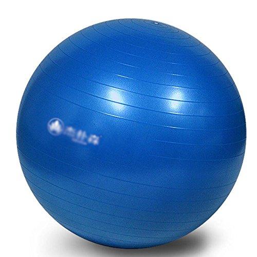 Wly&Home Gymnastikball - Professionelle Sportgeräte Explosionsgeschützte Test-Fußpumpe - Unterstützt 1200 Lbs - Beinhaltet Training Guide Access - 55Cm / 65Cm Balance Ball,Blue,55Cm
