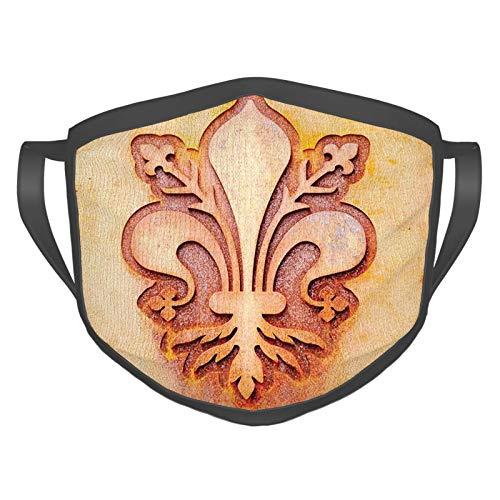 Máscara cómoda a prueba de viento, símbolo de flor de lirio en la placa diseño floral Royal Arms Francia Sign Cultural Print,Decoraciones faciales impresas para adultos
