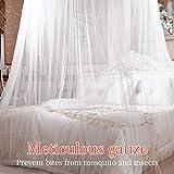 Moskitonetz, innislink Mückennetz Baldachin Fliegennetz Moskitonetze Insektennetz Feinmaschiges Reißfestes Insektenschutz Mückenschutz Mosquito Netz für Doppelbett Einzel-Bett 260 x 61 x 1250 cm -Weiß - 4
