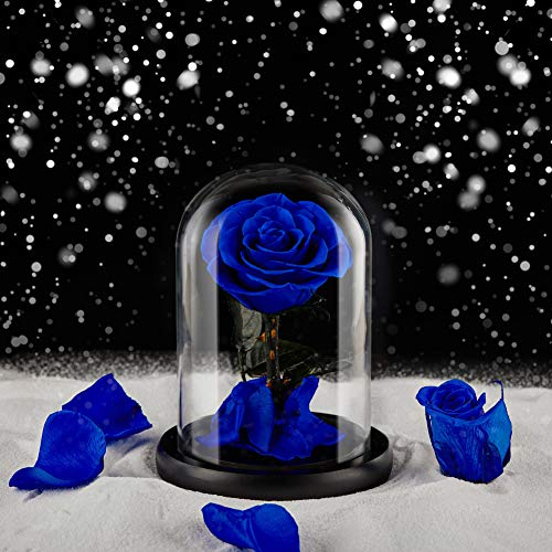 Eterfield Rosa real eterna en cristal, para San Valentín, cumpleaños, Día de la Madre, Día de Acción de Gracias, Navidad, aniversario de boda, regalos (azul)