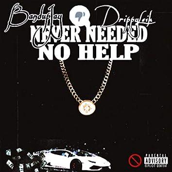 Never Needed Help (feat. DrippyLeik)
