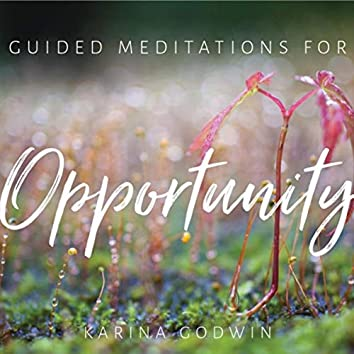 Guided Meditations for Opportunity