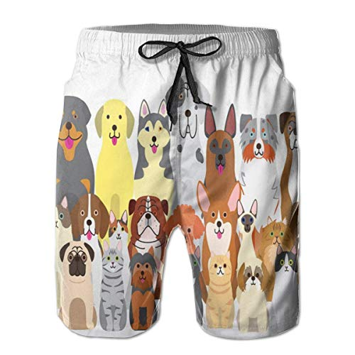 Men's Big and Tall Swim Trunks Beachwear Drawstring Summer Holiday,Adorable Dogs and Kittens in Disparate Sizes and Shapes Lovely Sitting Animals,XL,3D Print Shorts Pants