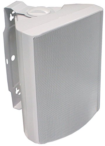 Visaton 50316 Lautsprecher WB 16, 100V+8 Ohm weiß