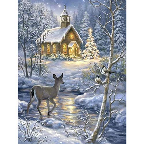 LIZHIOO DIY 5D Diamond Painting, Invierno Snow Scene Cross Stitch Full Diamond Bordery Nature and Animal Rhinestone Fotografías, Decoración del Hogar (Size : Round 40x50cm)