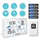 Best Indoor Outdoor Thermometers - Wireless Weather Station, Indoor Outdoor Thermometer Digital Temperature Review