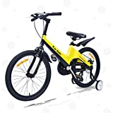 R for Rabbit Tiny Toes Rapid Plug n Play Stylish Bicycle for Kids...