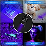hanwey UV Flashlight Black Light, 365nm LED UV Torch Ultraviolet Blacklight Detector for Dog/Cat Urine, Pet Stains,Pet Clothing Food Fungus and Bed Bug,IP65 Waterproof,3 Modes 14