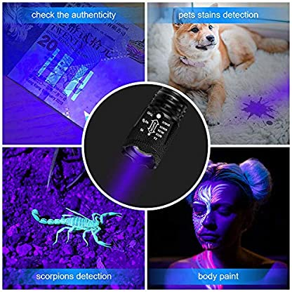 hanwey UV Flashlight Black Light, 365nm LED UV Torch Ultraviolet Blacklight Detector for Dog/Cat Urine, Pet Stains,Pet Clothing Food Fungus and Bed Bug,IP65 Waterproof,3 Modes 5