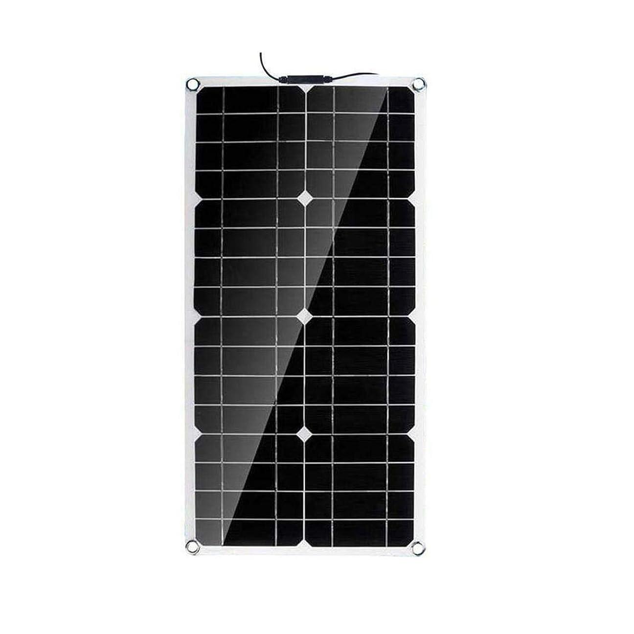 先駆者和付添人ソーラーパネル 40Wソーラーパネル30Aソーラー充電コントローラ太陽光発電パネルMC4ラインケーブル 太陽光発電システム (Color : Black, Size : 40w)