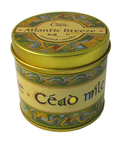 Royal Tara Fragrant Tinned Candle (Atlantic Breeze)