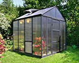 Palram 8ft x 8ft Glory Greenhouse