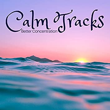 Calm Tracks: Better Concentration, Brain training, Zen Music for Studing & Contemplation, Bacground Music to Help You Focus