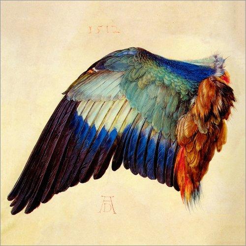 Poster 20 x 20 cm: Flügel Einer Blauracke von Albrecht Dürer - hochwertiger Kunstdruck, neues Kunstposter