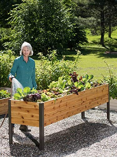 2' x 8' Raised Garden Bed Elevated Cedar Planter...