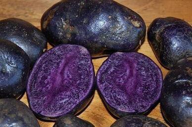 Semillas de patata dulce genérica fresca 50pcs para plantar violeta oscuro