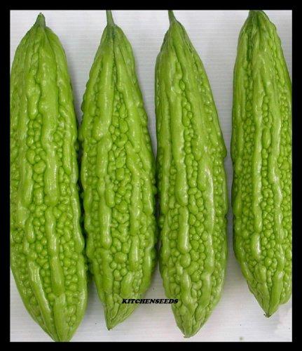 Mara Gourd Melon amer chinois Goya-niga-reishi, Tsuru Reisha 15 graines
