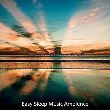 Shakuhachi and Guitar - Background Music for Sleeping In