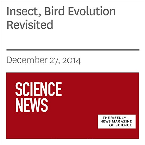 Insect, Bird Evolution Revisited audiobook cover art