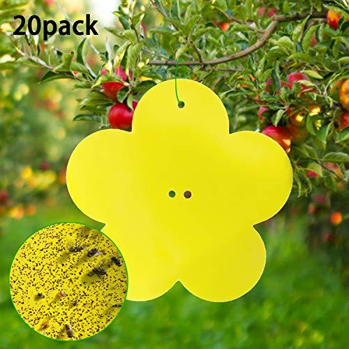 YHmall Forma de Flor de trampas para Insectos de Doble Cara de 20 Piezas (12 cm * 12 cm) - Adhesivos Dobles Amarillos