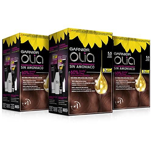 Garnier Olia - Pack de 3 coloración permanente sin amoniaco para un olor agradable con aceites florales de origen natural, color tono 5.5 Caoba