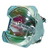 Bulb Only SP.8BH01GC01 Lytio Economy for Optoma BL-FU300A Projector Lamp