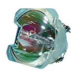 Lytio Economy for InFocus SP-LAMP-006 Projector Lamp (Bulb Only) 403311