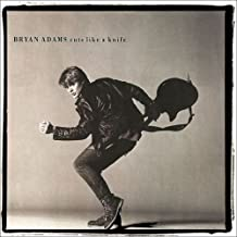 Bryan Adam Cuts Like A Knife Vinyl Record LP Album - SP-6-4919 - 1983 - Pop Rock Music - VG++ EX