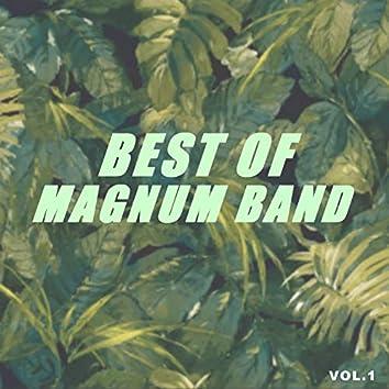 Best of magnum band (Vol.1)