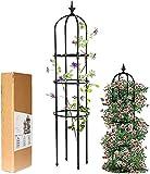 LIBRNTY Obelisco per rampicanti,Garden Supporto Piante...