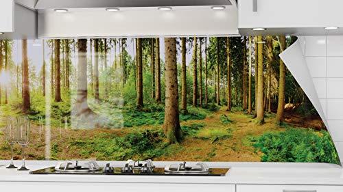 danario Küchenrückwand selbstklebend - Spritzschutz Küche in Glasoptik - PET Verbund Folie, 1,3 mm - Sonnenstrahlen im Wald - Materialmuster A4
