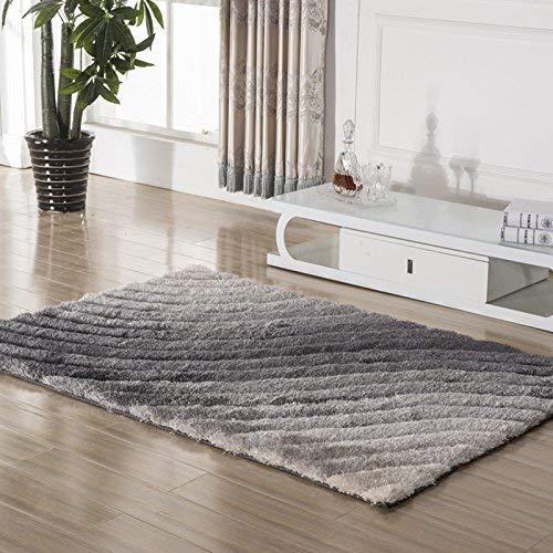 carpet Tapis Durable sous Vide Lavable Crypté 3D Tapis de Soie élastique Simple Table Basse Moderne Salon Chambre Tapis Tapis Quotidien,70 x 140 cm,# 6