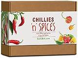 chillies 'n' spices, kit regalo con semi, 6 sensazionali varietà di peperoncino e spezie, ricchi di sapore facili da coltivare.
