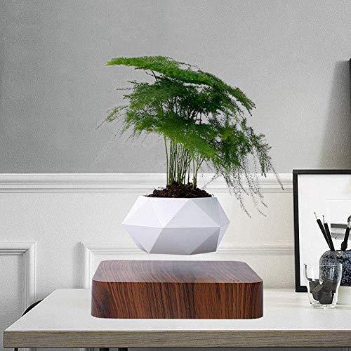 SEESEE.U Magnetischer Schwebetopf Topfpflanze schwebende Luft Bonsai für saisonale Dekoration von Haus und Garten (ohne Pflanzen)