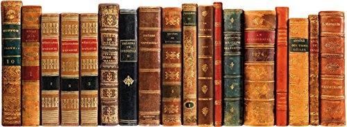 Plage Vinilo Cabecero de cama - Libros antiguos, 59 x 160 cm