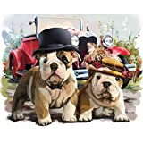 DIY 5D Diamond Painting Kits for Adults & Kids,Dog Full Drill Round Rhinestone Embroidery Cross Stitch Painting by Number Gem Arts Craft Home Decor,French Bulldog 15.7X11.8in