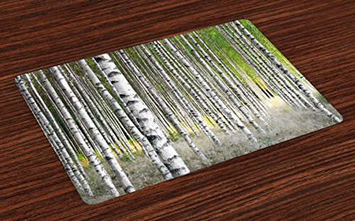 Ambesonne Birch Tree Place Mats Set of 4, Peaceful Late Summer Woodland Trunks Leaves Foliage Serene Tranquil, Washable Fabric Placemats for Dining Room Kitchen Table Decor, Brown Green