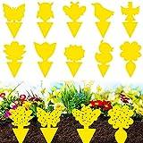 Gelbsticker Fliegenfänger,Jusduit 50 Stück Gelbsticker Gelbtafeln für Zimmerpflanzen Topfpflanzen Gelbsticker,Wasserdicht Gelbfalle Mückenfalle Klebefalle für Fruchtfliegen Mücken Blattläuse Nematoden