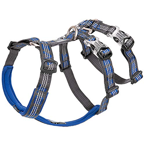 Double Harness for Dogs