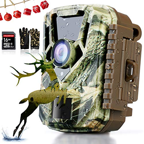 La caméra de chasse COLORWAY