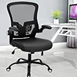 SAMOFU Office Chair, Computer Desk Chair with Adjustable Lumbar Support, Breathable High Back Mesh Chair Executive Chair for Home Office Conference Room, Ergonomic Design for Pain Back