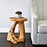 WELLAND Tree Stump Side Table, Live Edge Stool, Natural Edge Wood Side Table, Accent Table, 19' Tall