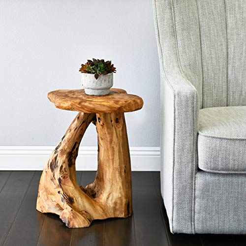 "WELLAND Tree Stump Side Table, Live Edge Stool, Natural Edge Wood Side Table, Accent Table, 19"" Tall"
