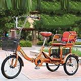 zyy Bicicleta de 1 Velocidades con 3 Ruedas Triciclo Adulto de...